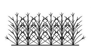 حفاظ لیلیوم شاخ گوزنی