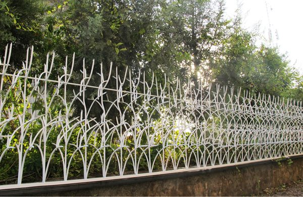 شاخ گوزنی-حفاظ-لیلیوم-ابشاری-بوته ای