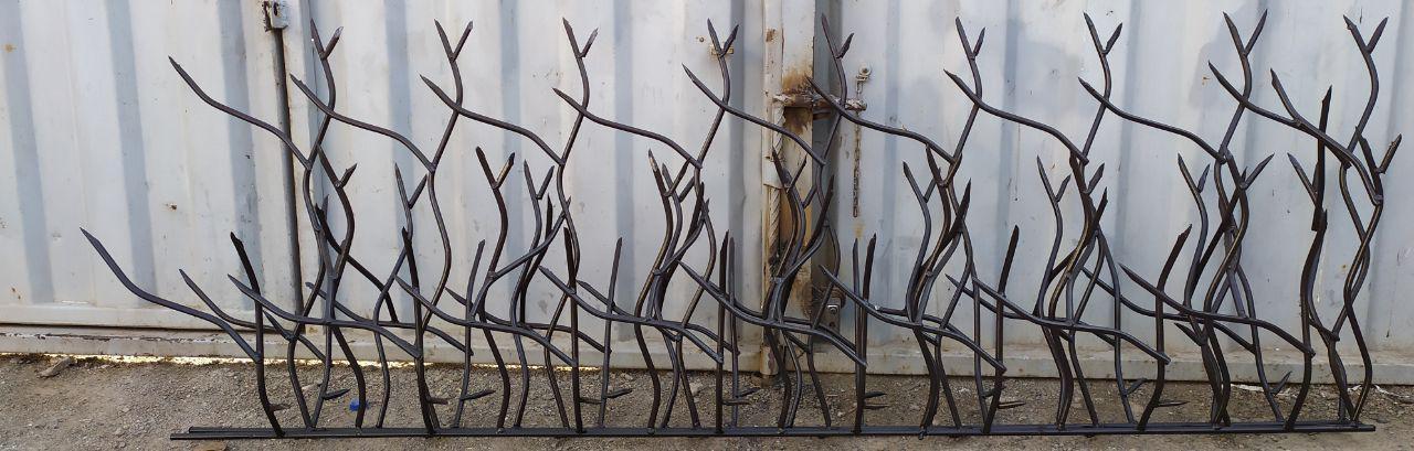 شاخ گوزنی کم تراکم