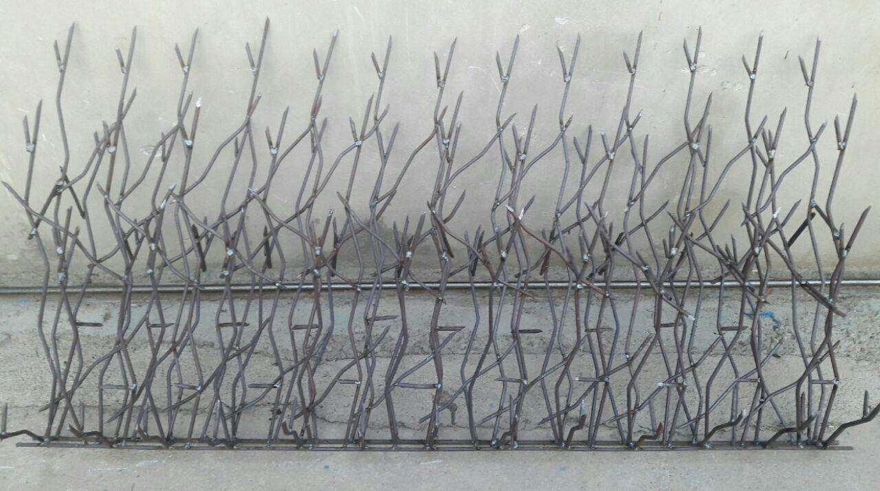 حفاظ-شاخ-گوزنی-9